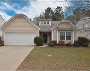 4266  Wiregrass Drive, Indian Land image
