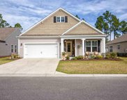 356 Firenze Loop, Myrtle Beach image