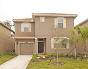 8878 Candy Palm Road, Kissimmee image