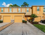 13917 River Willow Place, Tampa image