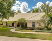 6259 Indian Meadow Street, Orlando image