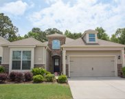419 Buck Run Rd, Murrells Inlet image