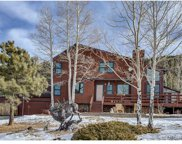 8920 Grizzly Way, Evergreen image
