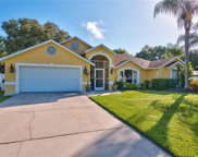 3920 Meadowlark Court, Land O Lakes image