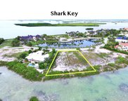 62 Cannon Royal, Shark Key image