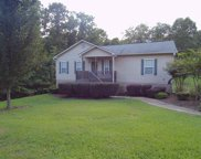 12720 Oak Forest Dr, Lakeview image