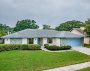 6104 Dory Way, Tampa image
