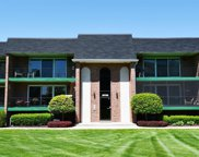 15723 Old Orchard Court Unit #1S, Orland Park image