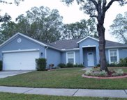 14801 Redcliff Drive, Tampa image