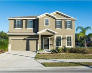 2714 Holly Bluff Court, Plant City image