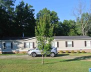 830 Mountain Springs Est, Odenville image