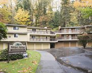 515 Newport Wy NW Unit C4, Issaquah image