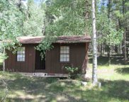 Lot 21 Forest Road 223, Pecos image