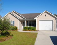 7315 Courtney Pines Road, Wilmington image