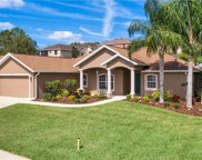 13051 Antique Oak Street, Clermont image