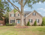 11502  Mcginns Trace Court, Charlotte image