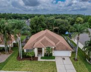 9906 Colonnade Drive, Tampa image