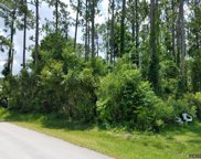 113 Boulder Rock Drive, Palm Coast image