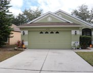 6628 Summer Haven Drive, Riverview image