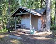 22119 N Clearlake Blvd, Yelm image
