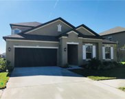 11827 Cross Vine Drive, Riverview image