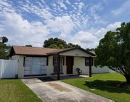 6505 Runningwoods Drive, Tampa image