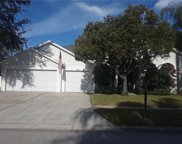 10219 Meadow Crossing Drive, Tampa image