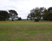 Lot 34 Royal Palm Drive, Groveland image