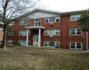10122 Hartford Court Unit GD, Schiller Park image