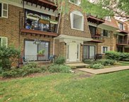 4100 Cove Lane Unit 1A, Glenview image