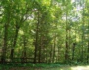 Dogwood  Trail, Tryon image