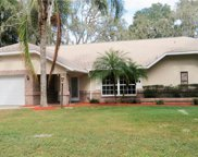 2710 Willow Oaks Drive, Valrico image