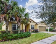 15715 Starling Water Drive, Lithia image