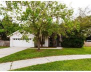 12105 Shady Forest Drive, Riverview image