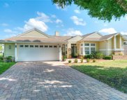 3123 Turtle Lane, Orlando image
