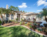 10210 Thicket Point Way, Tampa image