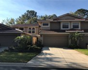 8215 Ambrose Cove Way, Orlando image