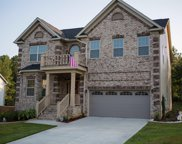 308 Tanners Mill Court, Chapin image