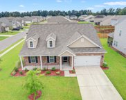 119 Firethorn Drive, Goose Creek image