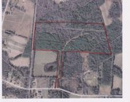 53.71 ac Cumbie Road, Andrews image