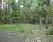 6783 Snowshoe Trail, Evergreen image