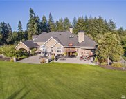 905 250th Ave NE, Sammamish image
