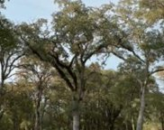 4709  Bell Road, Auburn image