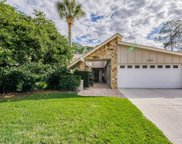 3382 Tanglewood Trail, Palm Harbor image
