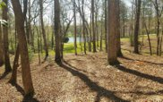 LT9 Fox Lake Subdivision, Blairsville image
