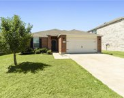 6037 Fantail Drive, Fort Worth image