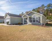 2701 Green Pond Circle, Conway image