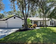 4740 Brayton Terrace S, Palm Harbor image
