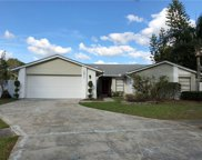 15911 Country Place, Tampa image