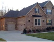 8123  Clems Branch Road, Indian Land image